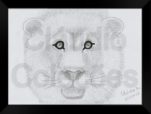 Quadro - Leão - Desenho a Mão-livre