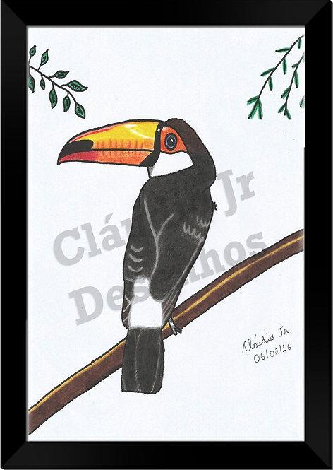 Quadro Desenho à Mão Livre (Tucano)