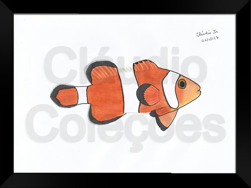 Quadro - Peixe-Palhaço - Desenho a Mão-livre