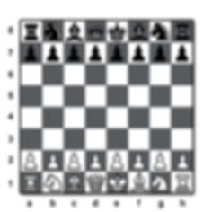 Jogo de Xadrez - Loja do Colecionador