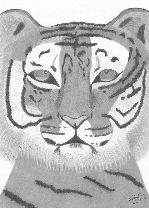 Desenho - Tigre feito a Mão Livre
