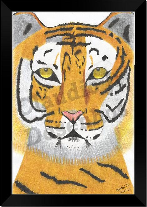Quadro - Desenhado à Mão Livre - Tigre