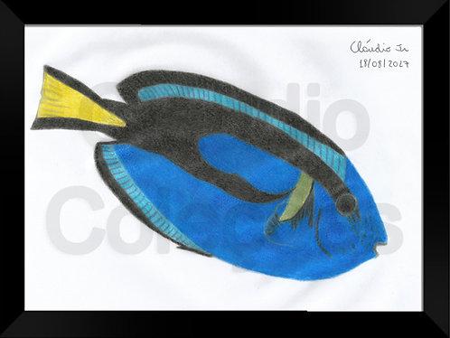 Quadro - Peixe Azul - Desenhado a Mão-livre