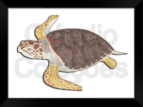 Quadro - Tartaruga 3D - Desenhado a Mão-Livre