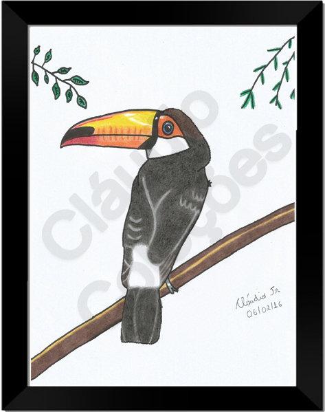 Quadro - Tucano - Desenhado a Mão-livre em folha Couchê A4 com moldura e vidro.