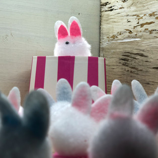 .20ea, Mini Pom Pom Bunnies
