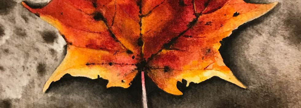 """Watercolour on birch 8""""x10"""""""