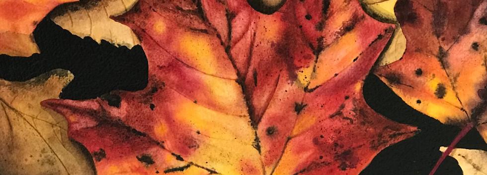 "SOLD- Watercolour on Birch 12""x12"""