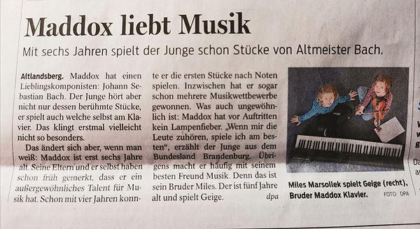 Salzgitter Zeitung.jpg