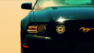 Ford Mustang: Get in Line [Rick Peters, USA, 2018] /// Wear Your Emotions: Delight [Masaya Matsui, F