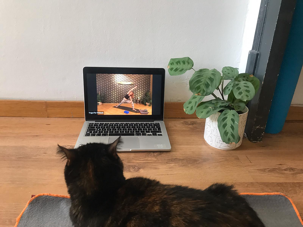 onlineyoga.png