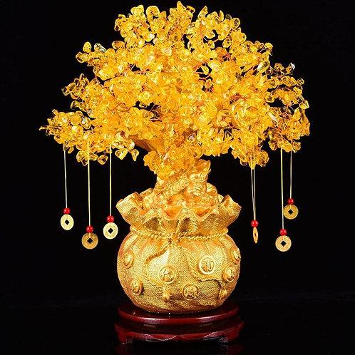 Wealth Tree Bonsai Style  (Lucky Tree)