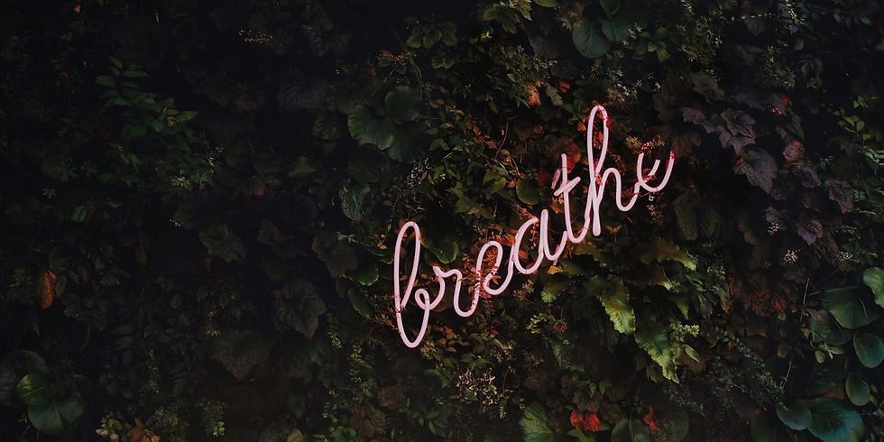 BREATHWORK WORKSHOP/  KIEFER- & NACKEN-RELEASE