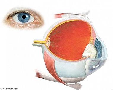 علاج العيون في روسيا