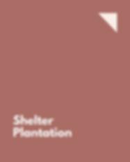 Shelter Plantation.png
