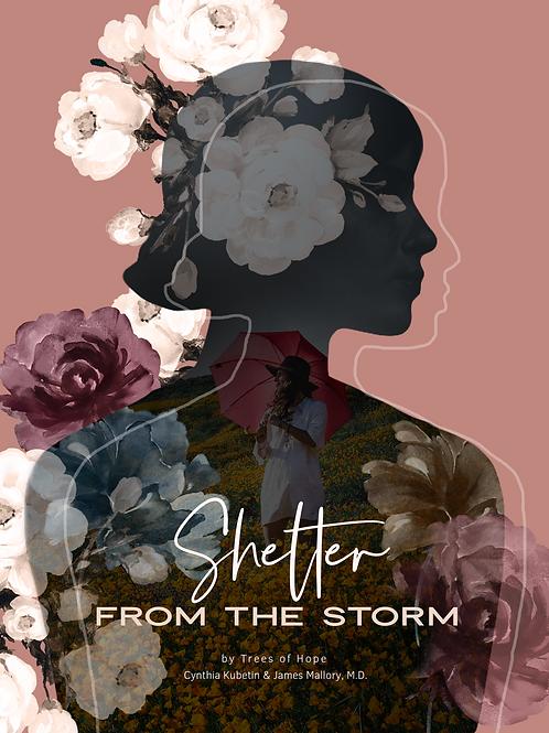 Shelter: Group Healing Study For Women