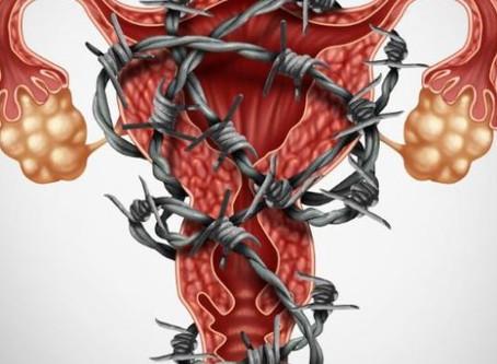 De espéculos, Endometriosis y un espíritu tomado (Agosto 2019)