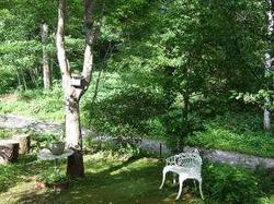 夢紀行のカエデの庭
