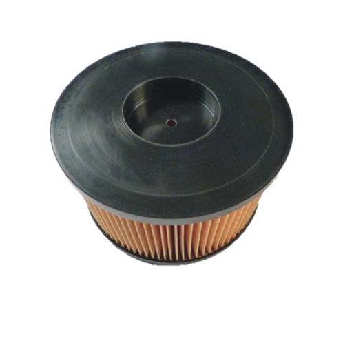 790129 Hatz Air Filter