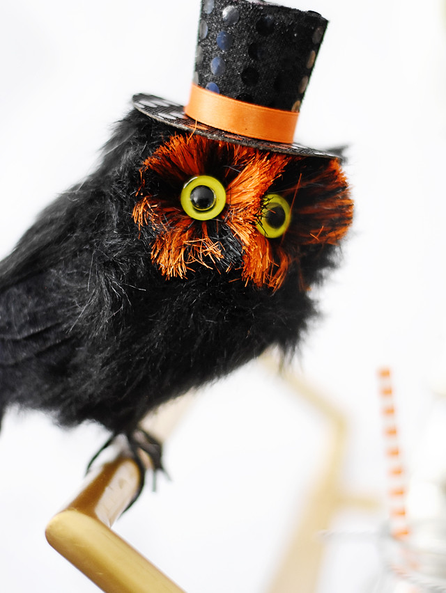 Halloween-themed Owl