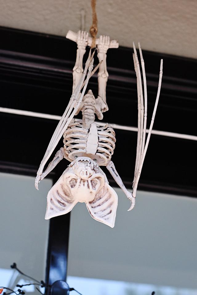 Skelly bat hangs above our front door!