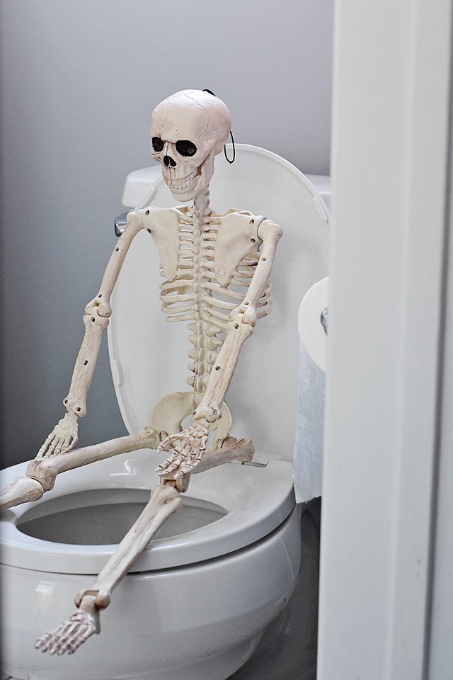 Even Skelly needs to use the bathroom sometimes!