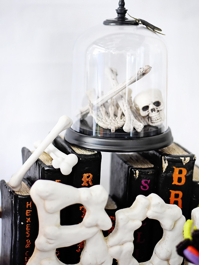 Glass cloche bell jar with bones!