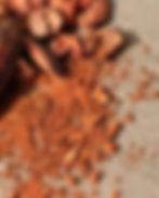 Broyage de cacao.jpg
