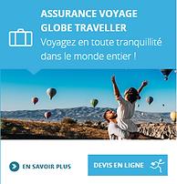ACS - Globe Traveller.png