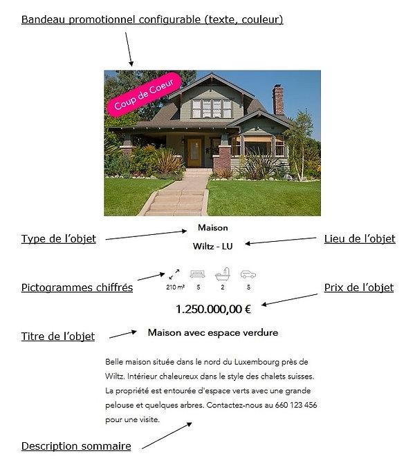 Annonce immobilière détaillée