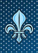 nigh-silver-blue-fleur-de-lis-medieval-f