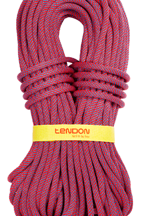 Ambition Dynamic Rope 10.5mm