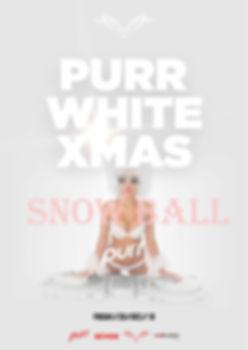 Xmas Purr 2019 Snow Ball.jpg