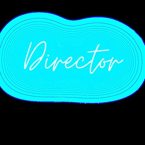 Artist Co-Op: Director