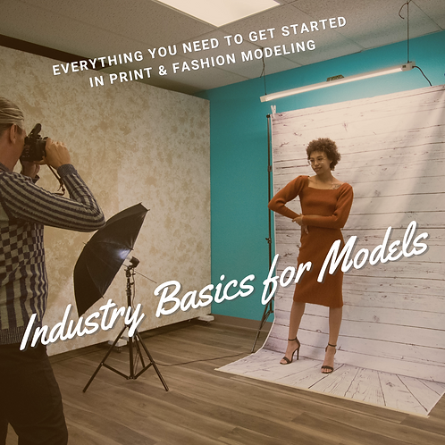 Industry Basics for Models