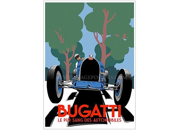 Bugatti Type 51 Poster