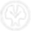 NationalCouncil-logo-transparent white r