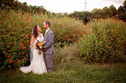 weddings 61.jpg