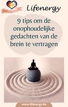 Gratis Ebook : 9 tips om de onophoudelijke gedachten van de brein te vertragen