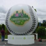 Baseball Bladder