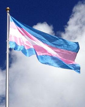 trans-flag.jpg
