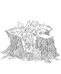 Pen outline of in the mushroom cove