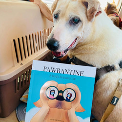 Raisin with Pawrantine book