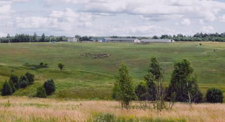 Сельский пейзаж. Rural landscape.