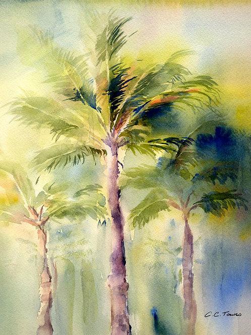 """Tres Palms"""