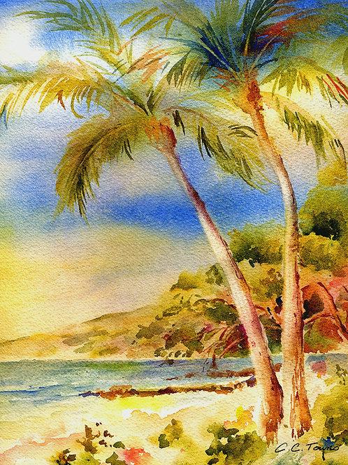 Kama'ole Beach, Maui