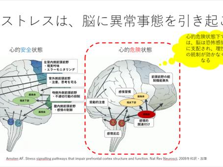 新型コロナが「脳」に与える影響