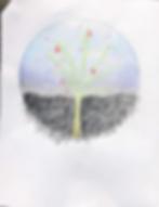 Tree circle.png
