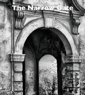 The Narrow Gate Book Review