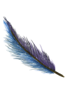 Feather 2.png